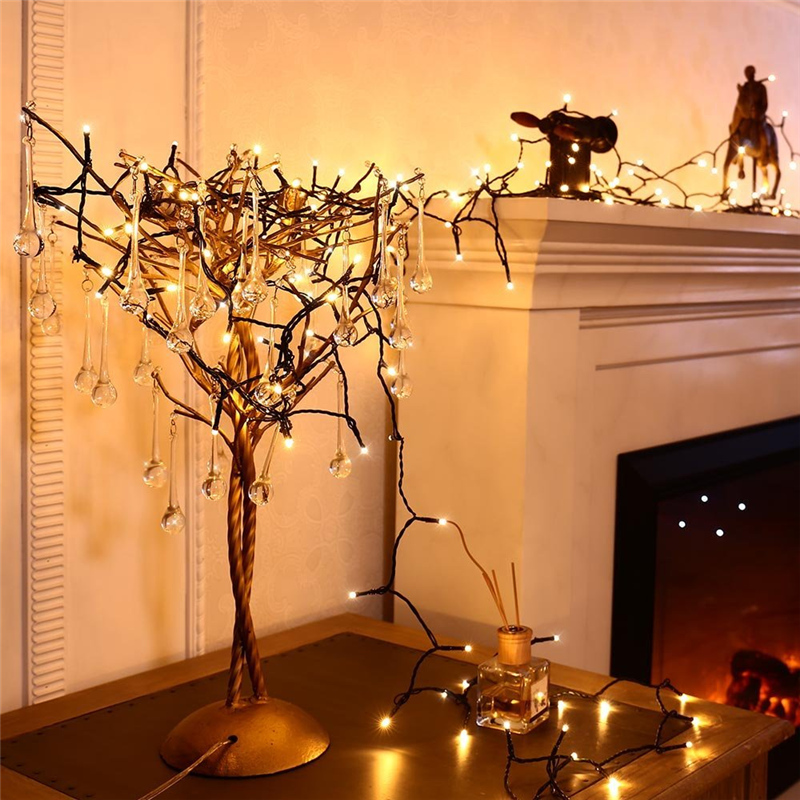 Dimmable LED Christmas Lights (17)