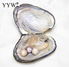 10-11mm AAA vacuum-packed oysters natural freshwater AAA pink purple white Mussel Shell Wish Pearl Oyster Jewelry Gifts