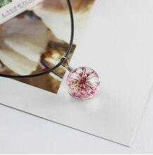 Одуванчика ожерелья сушеные цветы свитер цепи подарок на день рождения для своей подруги образцов растений хрустальный шар 1138(China)