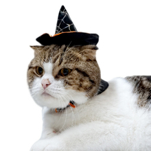 Pet cat dog hat dog clothes cute witch costume cap dog cat teddy cat pet product Halloween 2017 pet dog jacket coat(China)