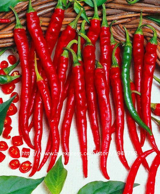 Home Garden Plant 200 Seeds Red Y Hot Long Chilli Pepper Patio Vegetable