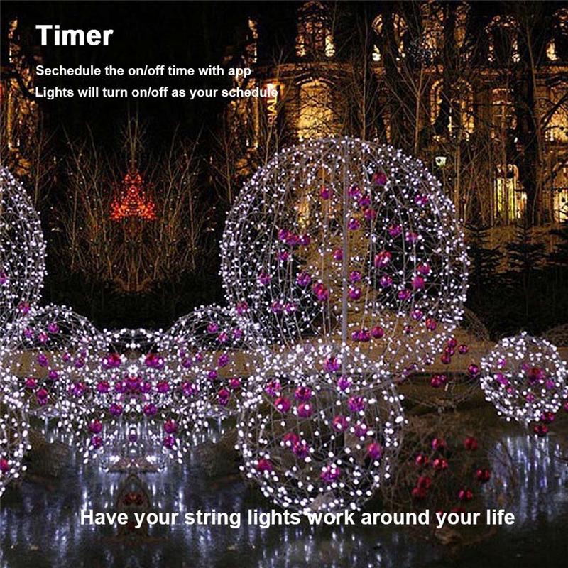 Dimmable LED Christmas Lights (15)