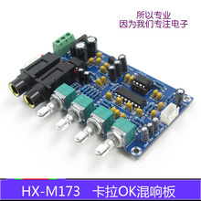 XH-M173 Cara OK karaoke microphone amplifier plate  reverberation singing amplifier board Cara