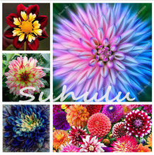 50 * Pcs/bag Rare Beautiful Dahlia Flowers Perennial Seeds,Exotic Seeds,Natural Growth,New Variety Light up Your Garden