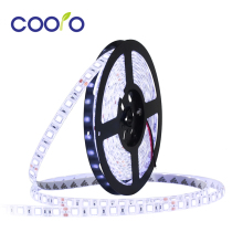 DC24V Waterproof LED Strip 5050 fiexible light 60Led/m,5m/lot ,White,Warm white,Red,Green,Blue,Yellow,RGB,Free shipping(China)