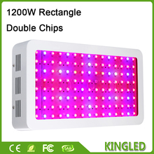 King plus 1200W Double Chips LED Grow Light Full Spectrum 410-730nm For Greenhouse Hydroponic Indoor Garden Growing High Yield(China)