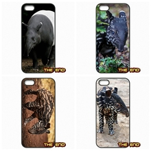 Malayan Tapir Belfast Zoo's latest addition Phone Cases For iPhone 4 4S 5 5C SE 6 6S 7 Plus Galaxy J5 A5 A3 S5 S7 S6 Edge