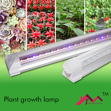 Led Grow Light Grow Tent Indoor Seeds Vernee Apollo Orchids Seedlings Lampara Greenhouse Led Lamps for Plants Tohum T8 9W 600MM(China)