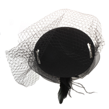 Black Feather Organza Mesh Veil Hair Clip Fascinator Party Hot(China)