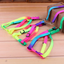 Brand New 1.2M Dog Collar Leash adjustable Rainbow Mascotas puppy Leash Soft Walking Pet Dog Harness Products for pet cat Dogs
