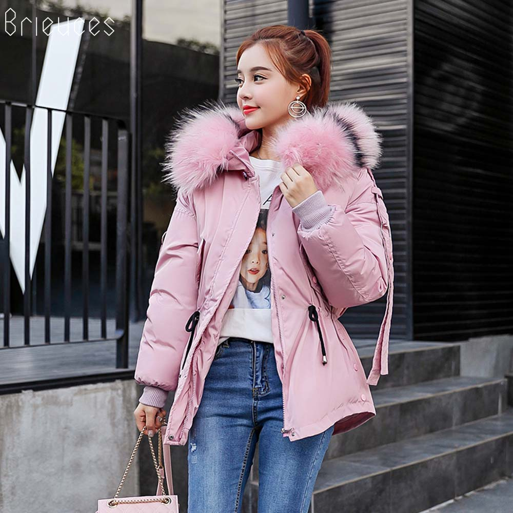Brieuces wadded jacket female 2018 autumn and winter jacket women cotton padded jacket short parkas winter