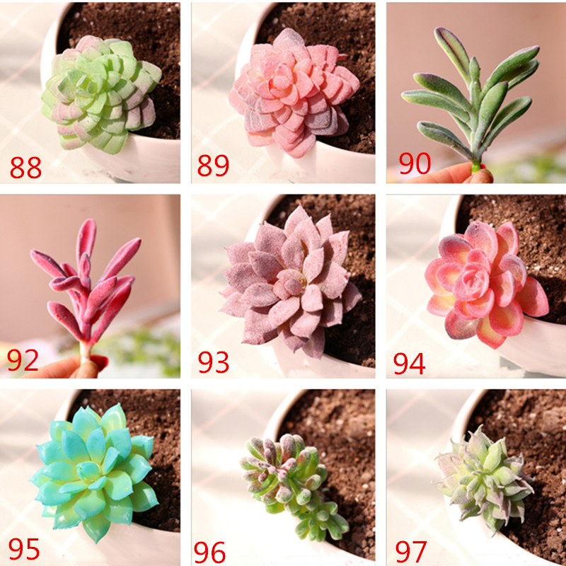miniatures Home Simulation meat flocking plants Mini Succulents Plastic Artificial Plants Tree Garden Miniature Home Decor 6