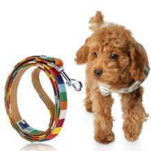 pet dog collar Cavas Pu Leather Colorful Rainbow Plain Pet Dog Collar Hight quality Halter Harness for Small dog collar lead