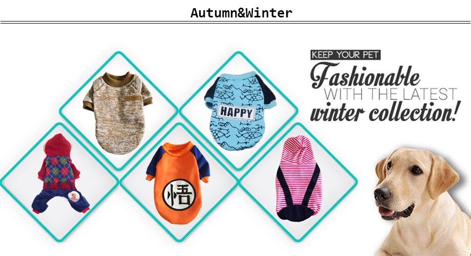 Autumn Winter clothes