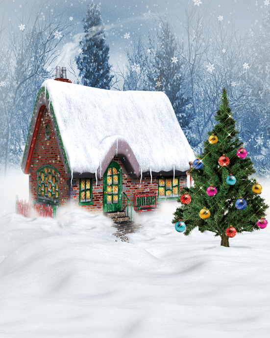 Customize snow Christmas village house photography backdrops 10ft vinyl digital cloth for photo studio background L-895<br>