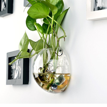 1PCS Wall Hanging Glass Vase Hydroponic Terrarium Fish Tanks Potted Plant Flower pot Wedding Home Decoration 2C