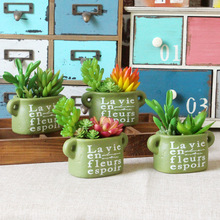 Potted Plant Flowers Potted Green Plants Indoor Balcony Decoration Home Furnishing Mini Holiday Gift