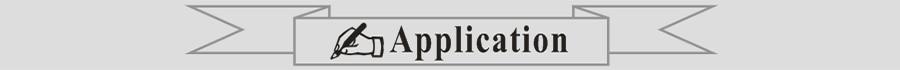 Application sticker vinyl decals Pvs ART WALL DECORATION 900