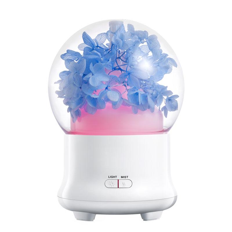air humidifier (11)