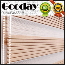 zebra blind Pleated design for Israel Canada and USA Europe market(China)