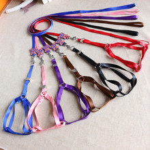 2017 Fashionable and Cute Cartoon Bear Nylon Material Dog Leash and Harenss 6 Colors 2 Sizes for Small and Medium Dogs(China)