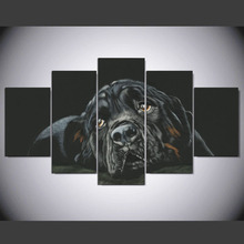 5 panel Modern Rottweiler hd Art print canvas art wall framed paintings for living room wall picture ny-1545(China)