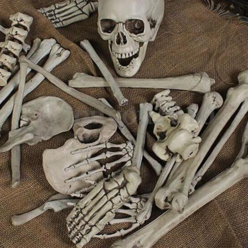 28Pcs of Bag Bones Halloween Skull Skeleton Figure Decorations Holiday Props Haunted House Plastic Skull Head toy Gift<br>
