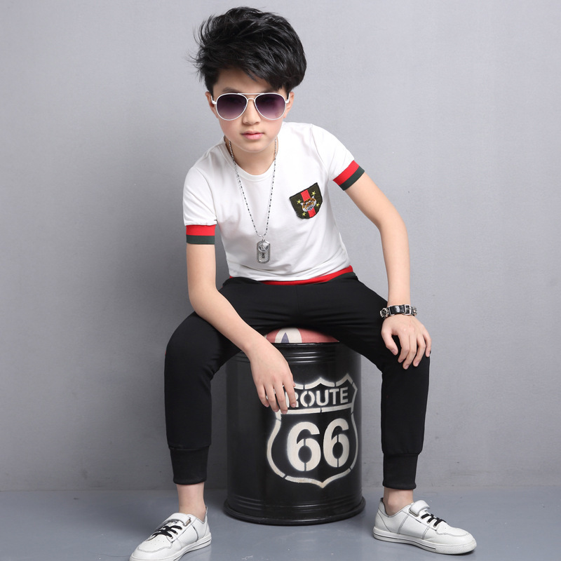 Short Sleeve Suit A Summer Tiger Mark Child Leisure Time Two Pieces Childrens Garment Fashion Hot Kids Clothing Sets<br>