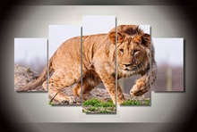 Canvas painting new 5 piece canvas art African Lion Painting decoration for home print poster picture canvas Free shipping\R17(China)