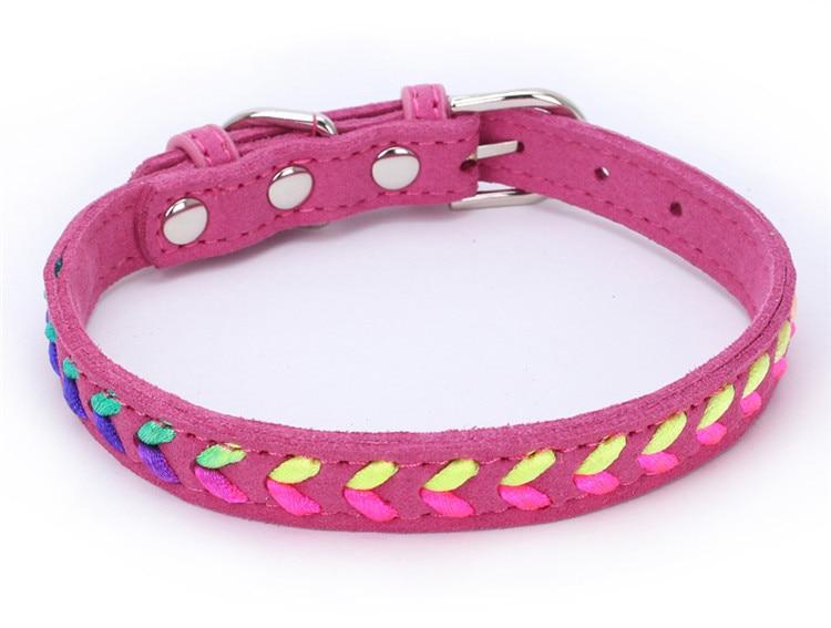 dogs collar (8)