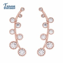 Delicate jewelry south Korean design leaves zircon earrings Zircon earrings for women and girls ER-073