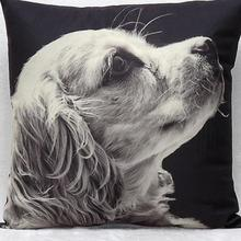 Short Plush Material Square Cushion Decorative Dark Dog Pillow Furnishing Sofa Cushion 45x45cm Without Filling