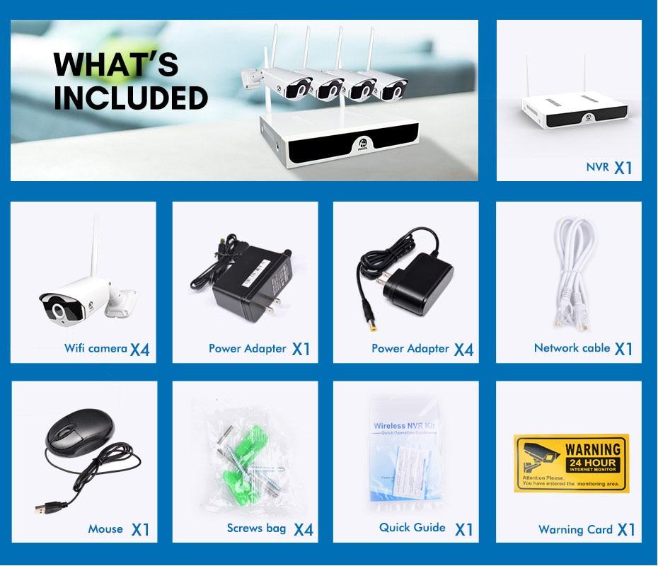 Wireless Video Surveillance (5)