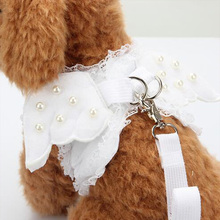 Cute Dog Leash With Angel Wings Angle Pet Harness Cat leads Leash Puppy Rhinestone for small dogs Harness leash XS-L 40S1Q(China)