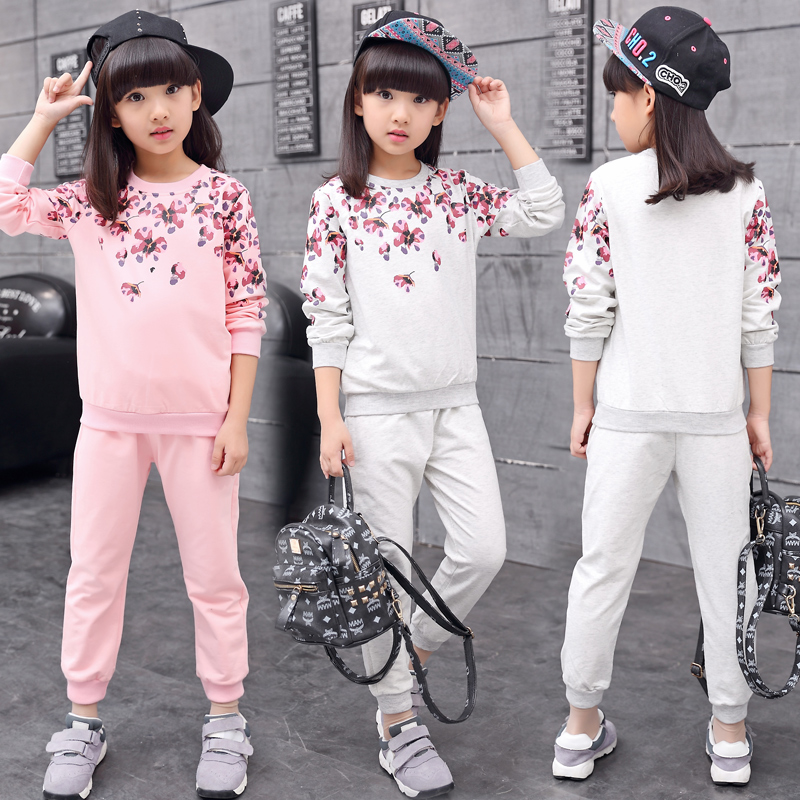 Childrens clothing set 2017 Spring new female child autumn sweatshirt twinset floral kids sports sets Girls clothing sets 1658<br><br>Aliexpress