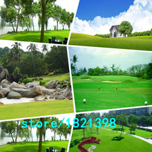 300 pcs lawn Seeds Tall Fescue Grass Low Maintenance,ideal lawn DIY your garden Perennial plant
