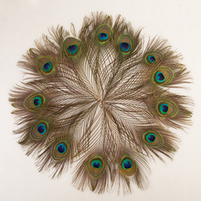 Woosee 10pcs Real Peacock Feather Trimmed Big Eyes Costumes Necklace Earrings Accessories Wedding Decorative 10-12inch 25-30cm