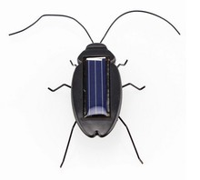 Top quality Solar Power Energy Cockroach 6 Legs Black Children Insect Bug Teaching Fun Gadget Toy Gift(China)