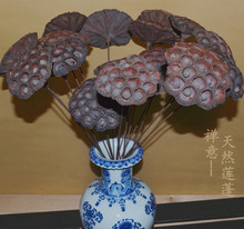 Dry natural lotus flower lotus stem floral decorative flowers dried floral display classical style entrance table