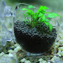 Water Plants Landscapes Pots Cups Mini Red Shrimp Aquarium Fish Tank Aquatic Crystal Glass Pot Plant Cup Holder Newest