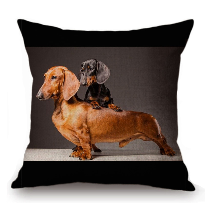 Dachshund Smooth Bl /& Tan Group Breed of Dog Cotton Cushion Cover Perfect Gift