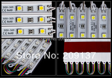 1000 Pcs/lot SMD 5050 DC12V Waterproof white/Cold white Led Pixel Module Christmas lamp light