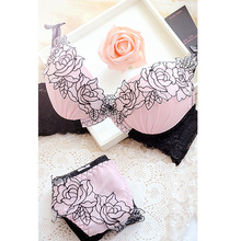 Embroidery sweet sexy deep V-neck adjustable push up lace to collect the furu young girl bra underwear set(China)
