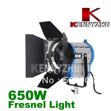 DHL Free Shipping Continous Lighting Video DV Studio Fresnel Tungsten Light 650W + Bulb + Barndoor GY9.5(China)