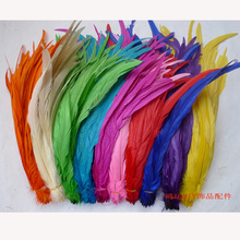 200root wholesale sell rooster tail feather 35-40cm / 14-16'' home furnishing accessories multiple colour select(China)