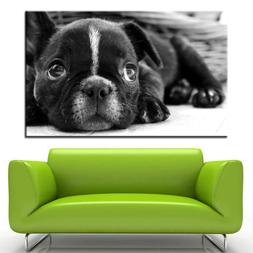Large size Printing Oil Painting french bulldog puppy Wall painting Decor Wall Art Picture For Living Room painting No Frame(China)