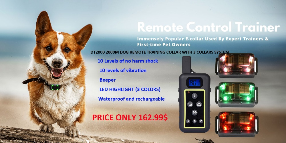 DT-2000-remote-control-trainer-3