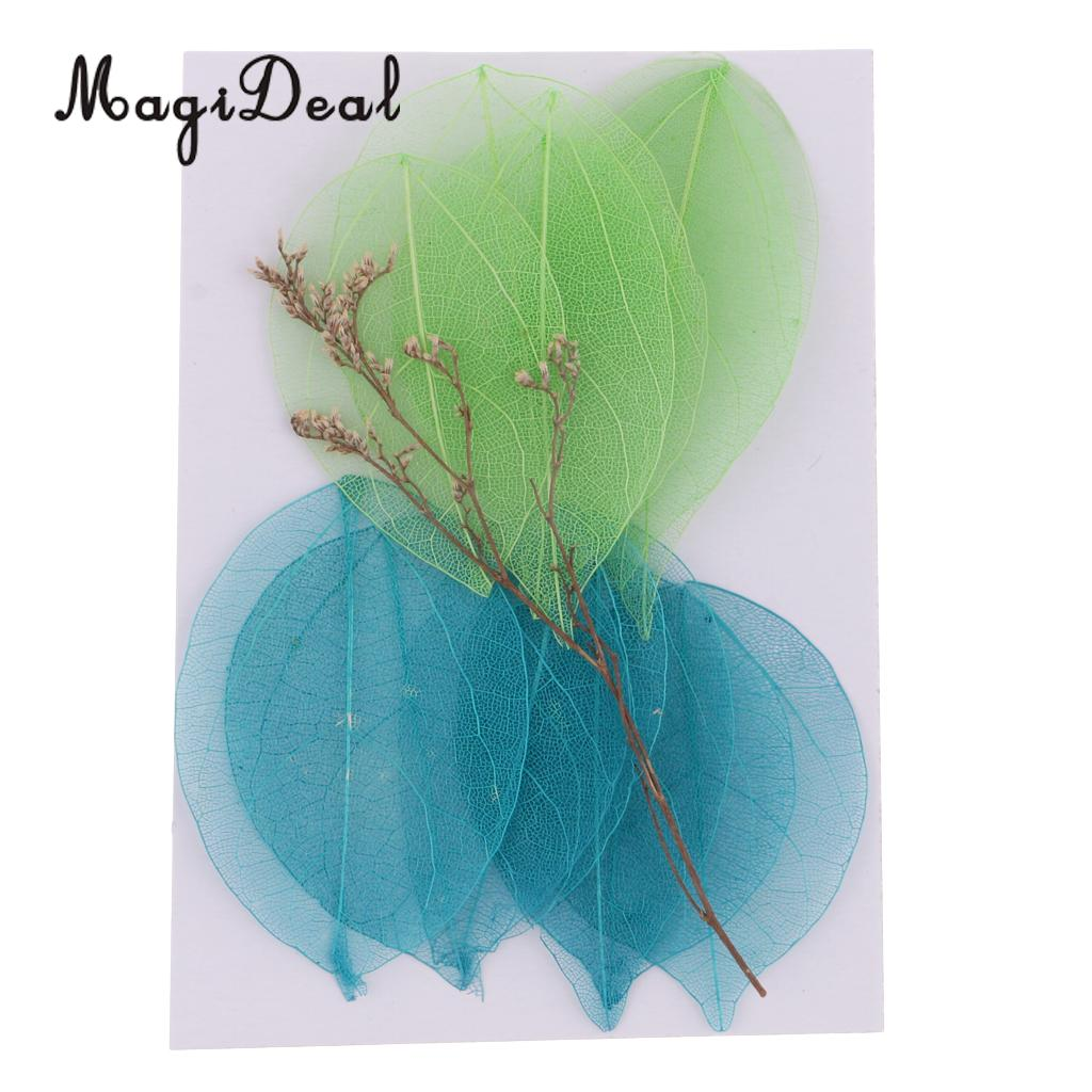 10 METALLIC COLOURS Real Dried Pressed Skeleton Leaves
