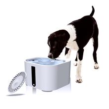 2 L Dog Cat Water Fountain Pet Automatic Water Feeder Pet Water Fountain Automatic Pet Feeder Automatic Feeders For Dogs(China)