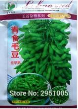 50 gram/original pack Soybeans,Glycine max seed Early maturity, high yield vegetables bonsai plant home garden free shipping